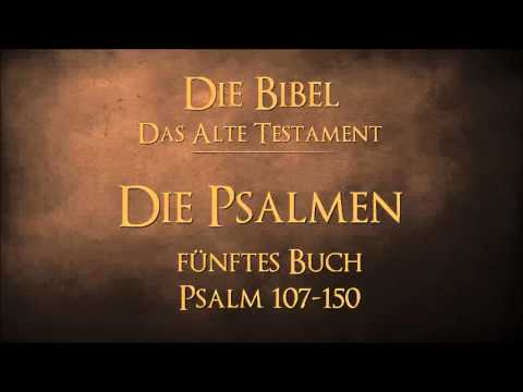 Die Psalmen - fünftes Buch Psalm 107-150