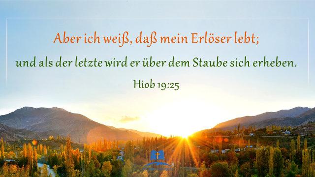 Image Result For Zitate Christliche Erziehung
