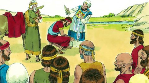 Die biblische Geschichte - Salomo wird könig