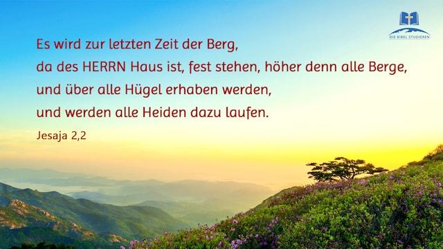 Berg,HERRN,Zeit,Hügel,Heiden