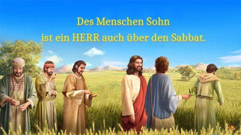 Des Menschen Sohn ist ein HERR auch über den Sabbat