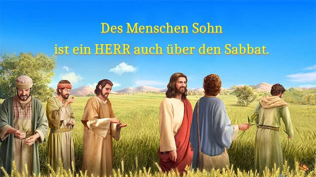 Jesus, Sabbat