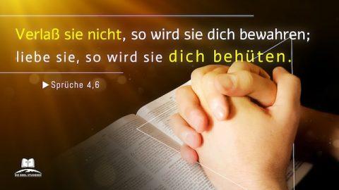 Bibelverse über den Schutz
