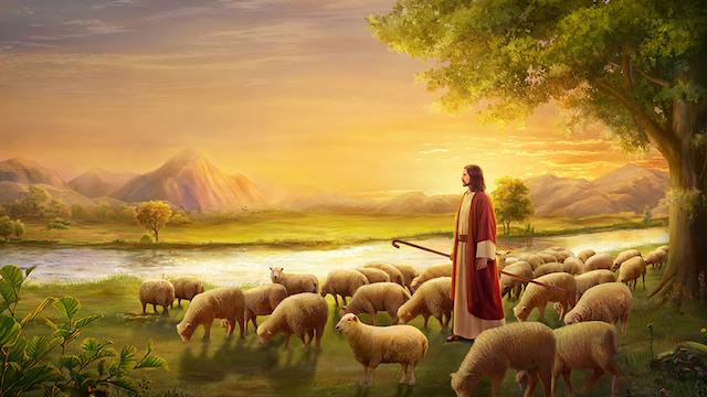 Jesus Bild