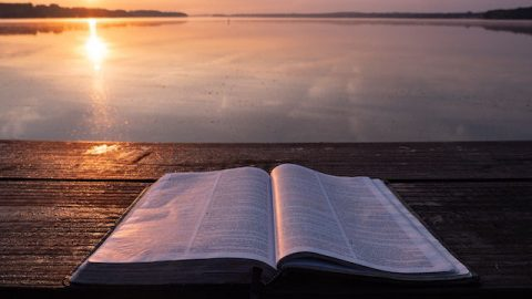 Buch der Bibel - Gibt es irgendwelche Fehler in der Bibel?