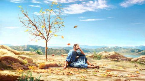 Jona 4 - Jonas Zorn und Gottes Erbarmen