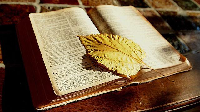 das buch der Bibel