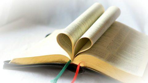 Die Bibel - Welche Art von Buch ist die Bibel