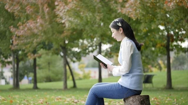 eine Mädchen liest Buch