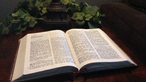 Die Bibel richtig zu lesen, näher Gott zu sein