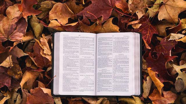 Das Buch Bibel