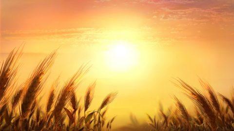 """Frage 1: Brüder und Schwestern, die Bibel ist sehr deutlich, was die """"Erlösung"""" und den """"Eintritt ins Himmelreich"""" angeht. """"Denn so man von Herzen glaubt, so wird man gerecht; und so man mit dem Munde bekennt, so wird man selig"""" (Röm 10,10). Wir sind bereits durch unseren Glauben an Jesus gerettet worden. Wenn wir gerettet sind, sind wir für immer gerettet. Wenn der Herr ankommt, werden wir gewiss in das Himmelreich eingehen können."""