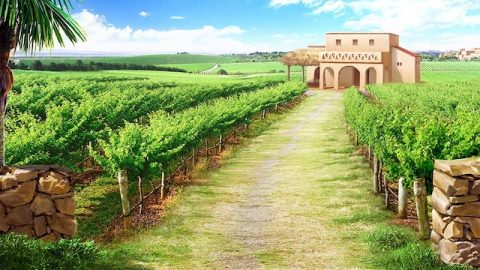 Jesus Gleichnis von den Arbeitern im Weinberg