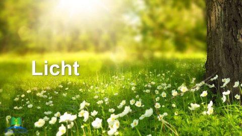 Die grundlegende Lebensumgebung, die Gott für die Menschheit schafft–Licht