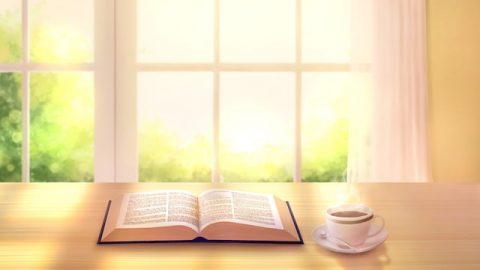 Bist du bereit, jemand zu sein, der Zeugnis für Gott ablegt?