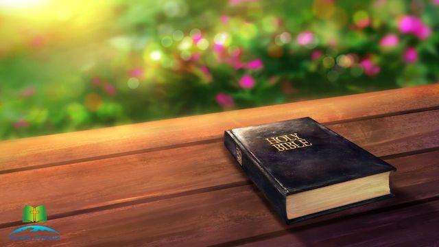die bibel auf dem Tisch