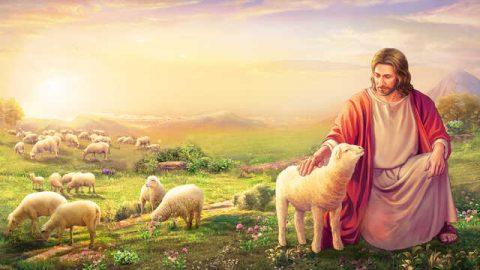 """Überlegung von Römer 8,1: was bedeutet """"im Christus""""?"""