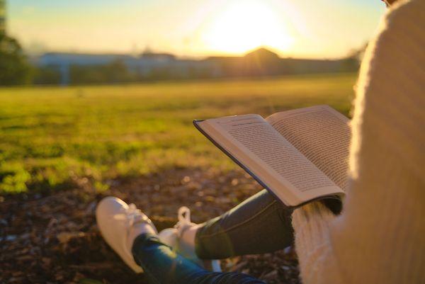 Gottes Wort lesen