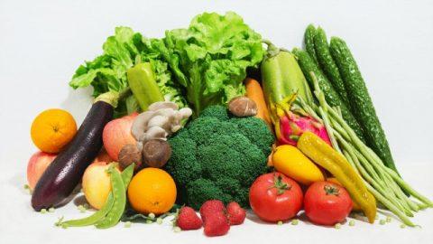 Allerlei Arten von vegetarischen Nahrungsmitteln, die Gott für die Menschheit bereitstellt