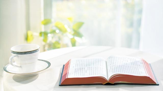die-bibel